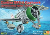 Curtiss BFC-2 Goshawk American Navy fighter - bomber