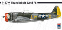 P-47M Thunderbolt 62nd Fighter Squadron