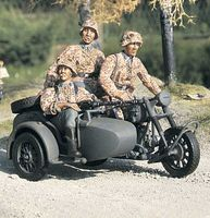 BMW R75 with Sidecar - Team - Image 1